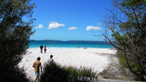 DNSW #MTVTrippers Hyams Beach